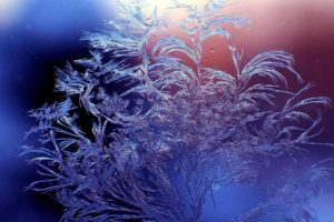winter, Frost, Patterns, Glass