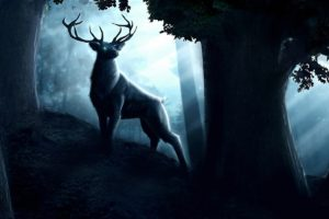 kurtisdawe, Cghub, Com, Kurtis dawe, 2d, Paintings, Cg, Digital art, Animals, Deer, Trees, Forests, Nature, Artistic, Night, Moonlight, Majestic, Fantasy