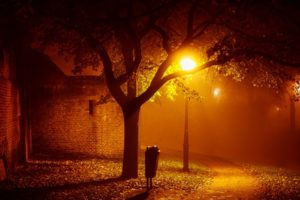 landscapes, Night, Lights, Mood, Autumn, Fall, Seasonal, Fog, Mist, Places, Houses, Buildings, Architecture, Trees, Lamps, Lamp posts, Photography