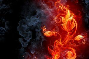 abstract, Fire, Flames, Smoke, Flowers, Cg, Digital, Art, Color