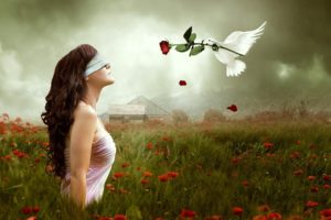 mood, Emotion, Gothic, Manipulation, Cg, Digital, Art, Blindfold, Dove, Animals, Birds, Love, Romance, Fantasy, Nature, Landscapes, Fields, Flowers, Poppy, Sky, Clouds