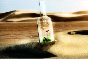 bokeh, Manipulation, Cg, Digital, Art, Desert, Dunes, Landscapes, Bottle, Flowers, Dream, Contrast, Glass, Mood