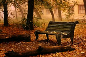 landscapes, Bench, Chair, Seat, Autumn, Fall, Leaves, Trees, Mood