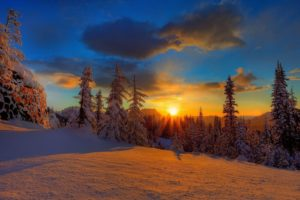 sunset, Landscapes, Nature, Winter, Snow, Trees, Skylines, Forests
