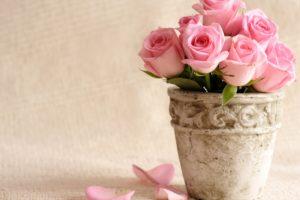 flowers, Bucket, Roses, Vase, Pink, Roses
