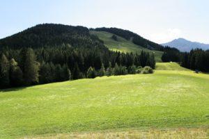 austria, Seefeld, Hills, Forest, Skiing, Resort