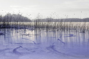 nature, Landscapes, Lakes, Ice, Grass, Reeds, Frozen, Sky, Hills