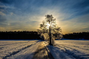 frost, Nature, Landscapes, Roads, Winter, Snow, Trees, Sky, Clouds, Sunset, Sunrise, Reflection