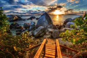 coast, Rocks, Sea, Sunset, Caribbean, Branches, Leaves, Clouds, Beaches, Hdr