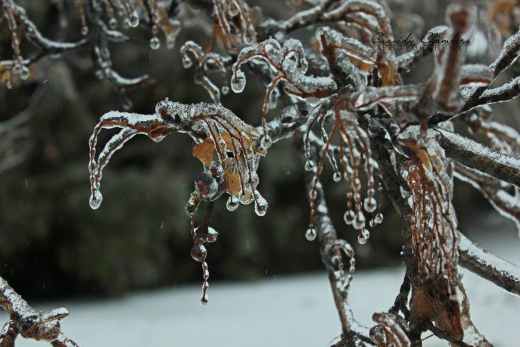 nature, Ice, Winter, Macro, Textures, Reflexions, Sculptures, Water, Art, Frozen HD Wallpaper Desktop Background