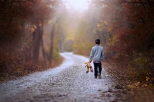 kids, Children, Childhood, Teddy, Bear, Road, Way, Path, Walking, Alone, Lonely, Forest, Jungle, Landscapes, Nature, Earth