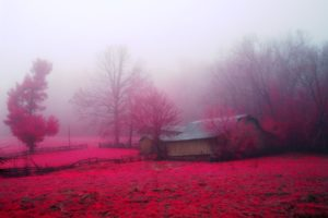nature, House, Huts, Trees, Earth, Farms, Countryside, Autumn, Red, Pink, Rose, Beauty, Landscapes