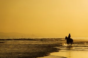 sea, Beaches, Horse, Sky, Yellow, Landscapes, Nature, Earth, Alone, Lonely, Emotions, Horseman, Rider, Thinking