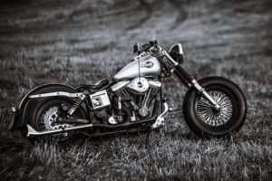 harley, Davidson, Classic, Old, Motorcycles, Speed, Style, Fields, Nature, Landscapes, Earth, Bike