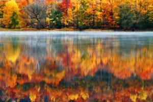 morning, Nature, Usa, Lake, New, Hampshire, Reflection, Autumn, Fog