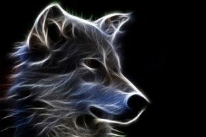 fantasy, Original, Art, Artistic, Artwork, Wolf, Wolves