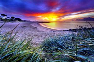 beach, Sand, Coast, Beaches, Green, Grass, Horizon, Sky, Clouds, Dawn, Sunset