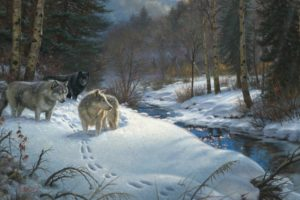 mark, Keathley, Valley, Of, Shadows, Painting, Winter, Forest, Creek, Animals, Wolves, Night, Yurt, Western, Art, Native, Indian