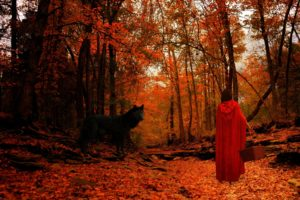 red, Riding, Hood, Wolf, Wolves, Trees, Forest, Mood, Autumn, Girl, Girls, Women