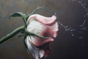 traditional, Art, Paintings, Still, Life, Still, Life, Roses, Painting, Flower, Drops, Flowers